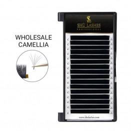 Wholesale Camellia Lash Extensions (16 Lines)